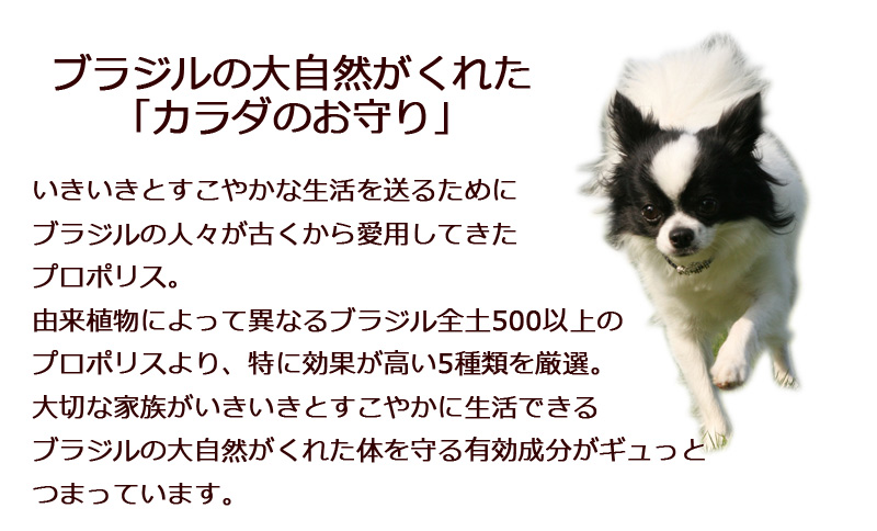 ペット用高濃度プロポリス アピグリーン