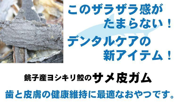 国産無添加犬用おやつ・猫用おやつ サメ皮ガム 魚おやつ