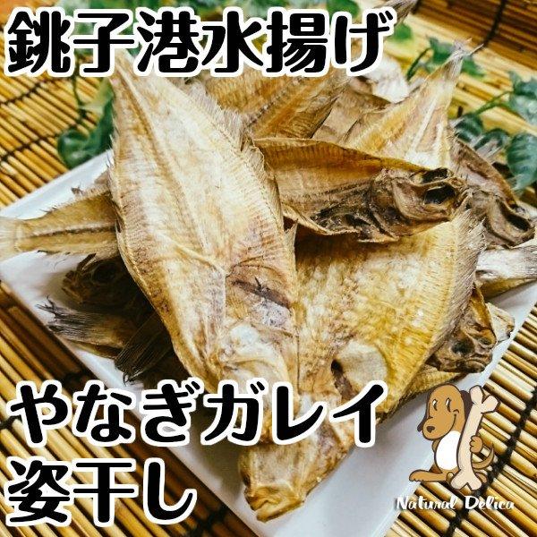 画像1: 【国産無添加】銚子産やなぎガレイ姿干し (1)